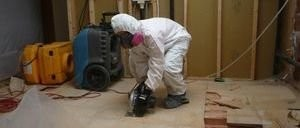 Mold Damage Repair On Floor